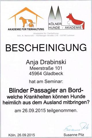 Seminar MMK Anja